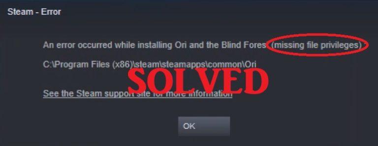 Steam Missing File Privileges Error {Fixed}